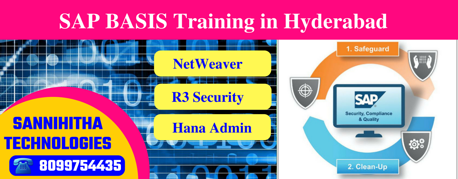 SAP Basis Training in Hyderabad - SAP Institutes In Ameerpet